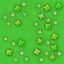 grass_flower.png
