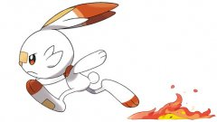 Scorbunny  Illustration