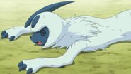 Knocked out Absol.jpg