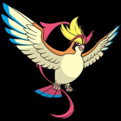 018 Pidgeot